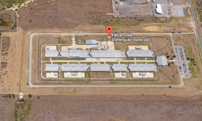 Fabian Dale Dominguez State Jail Inmate Search and Prisoner Info